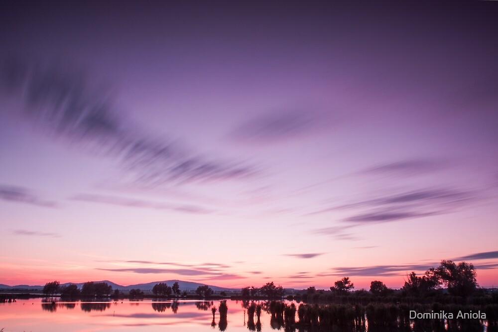 Purple sunset by Dominika Aniola