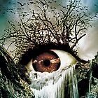 Cascade Crying Eye by Marian  Voicu