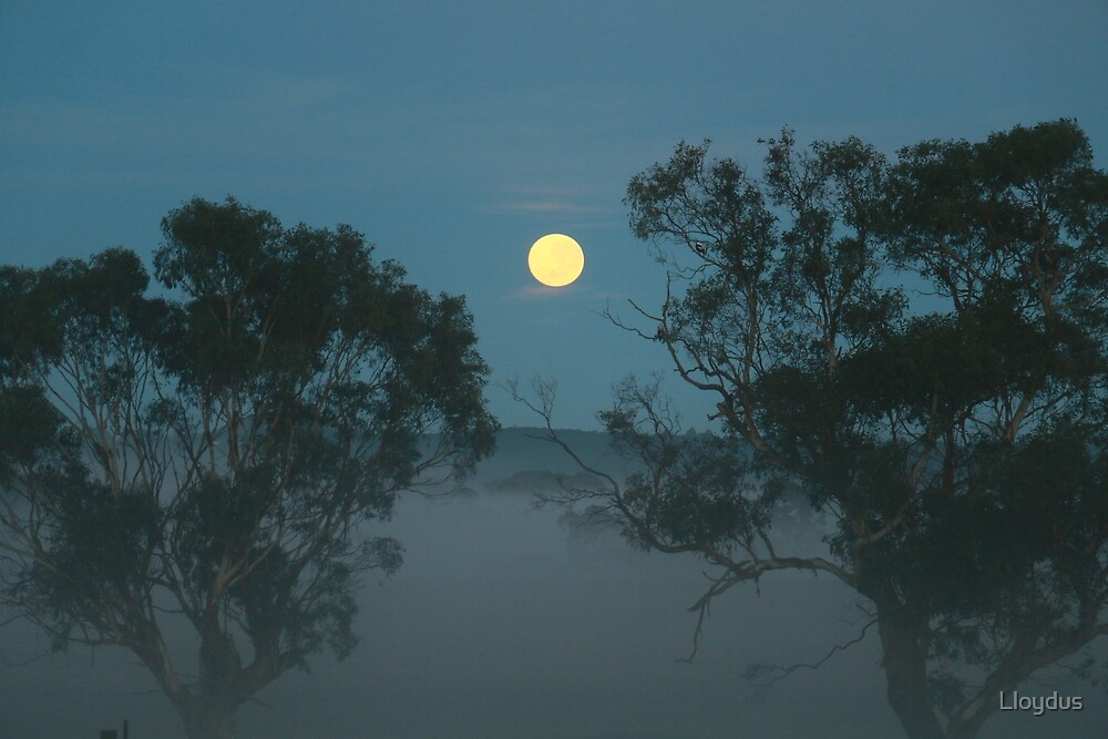 Moon Setting in Mist by Lloydus