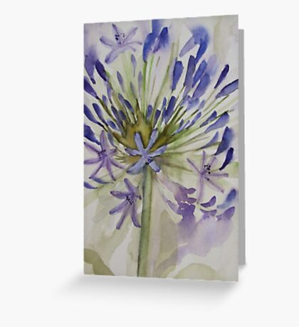 agapanthus bloom 'for the love of flowers' © 2007 patricia vannucci  Greeting Card