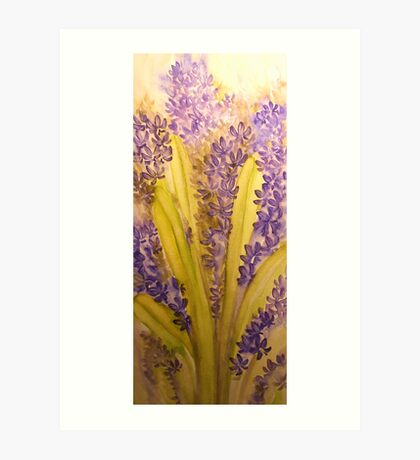 hyacinth 'for the love of flowers' © 2007 patricia vannucci  Art Print
