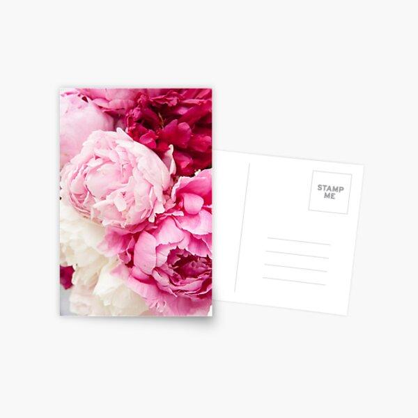 Riot of Pinks Postcard