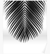 PALM LEAF Black & White II Poster