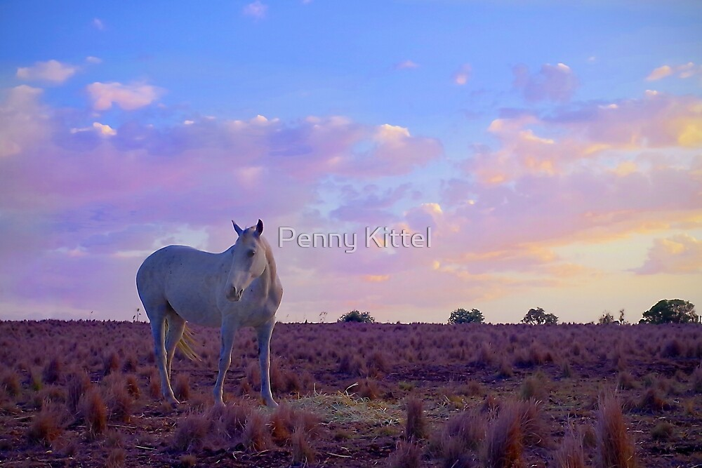 Pastel Grey by Penny Kittel