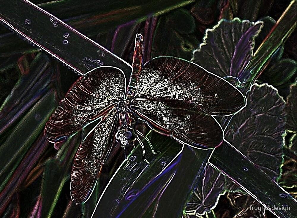 Amazon dragonfly by frugnusdesign