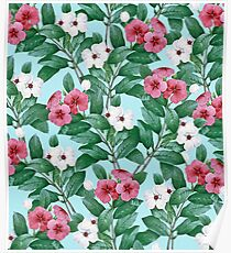 Flower garden II Poster