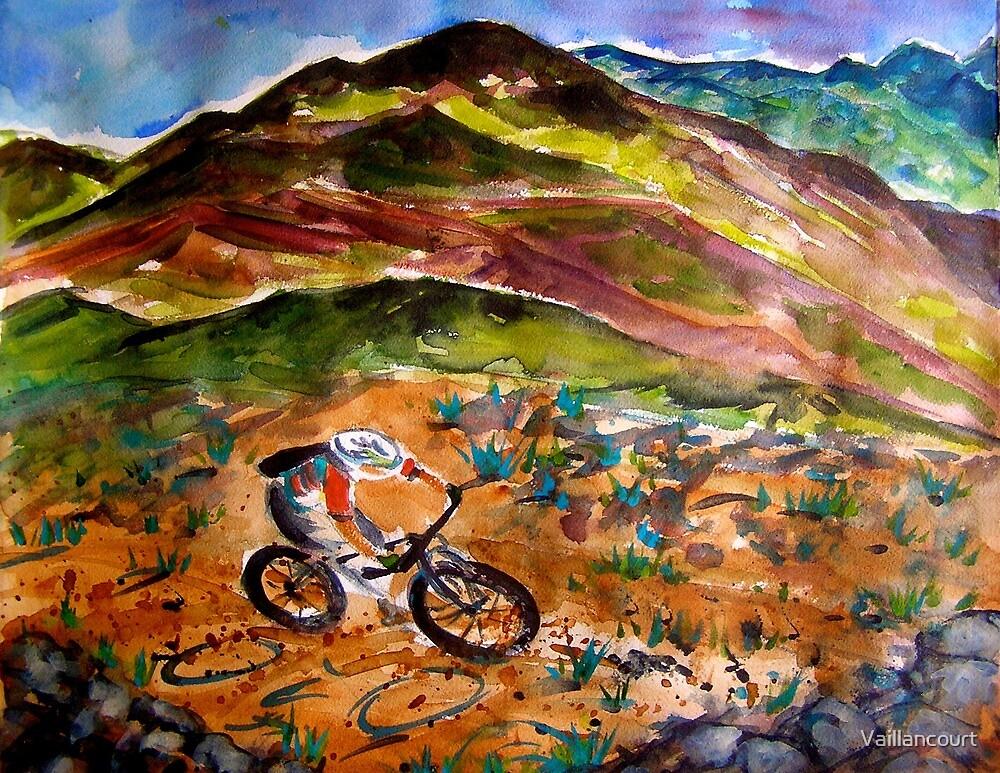 Mountain Biking New Mexico by Vaillancourt