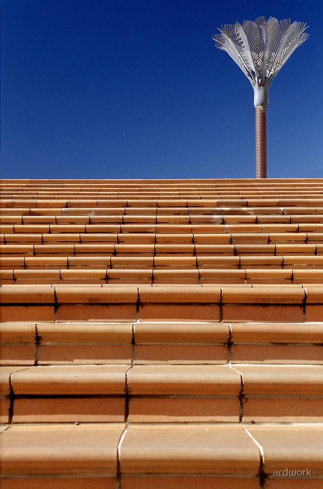 Nikau Steps by ardwork