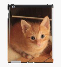 Ginger kitten iPad Case/Skin