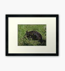 Sleep softly little one Framed Print