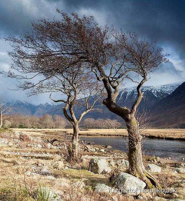 Loch Etive, Scotland by Krzysztof Nowakowski