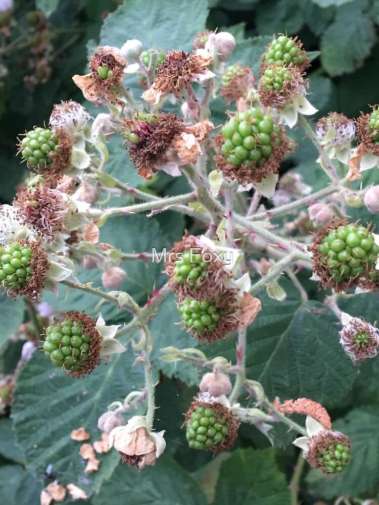 Black Berries. by Mrs Foxy
