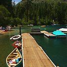 Summer at the Lake by Barbara  Brown