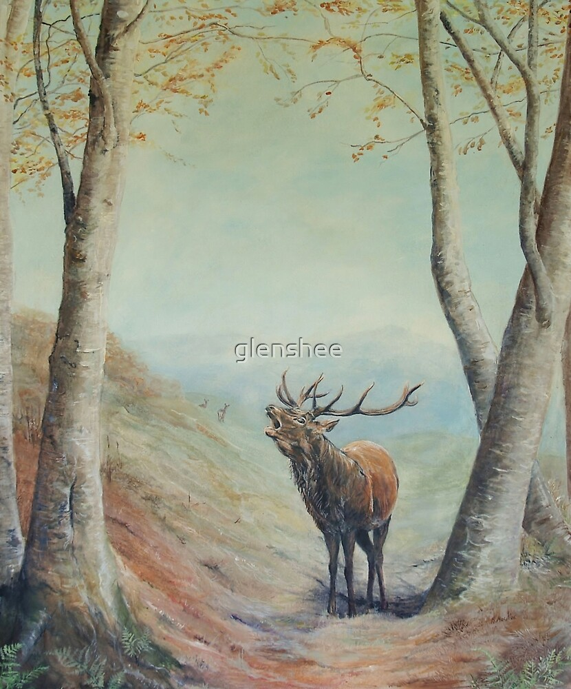 "Red Deer Stag ""The calling"" by glenshee"