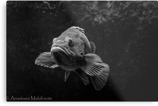 Fish in the Dark Sea by StasiaMonster