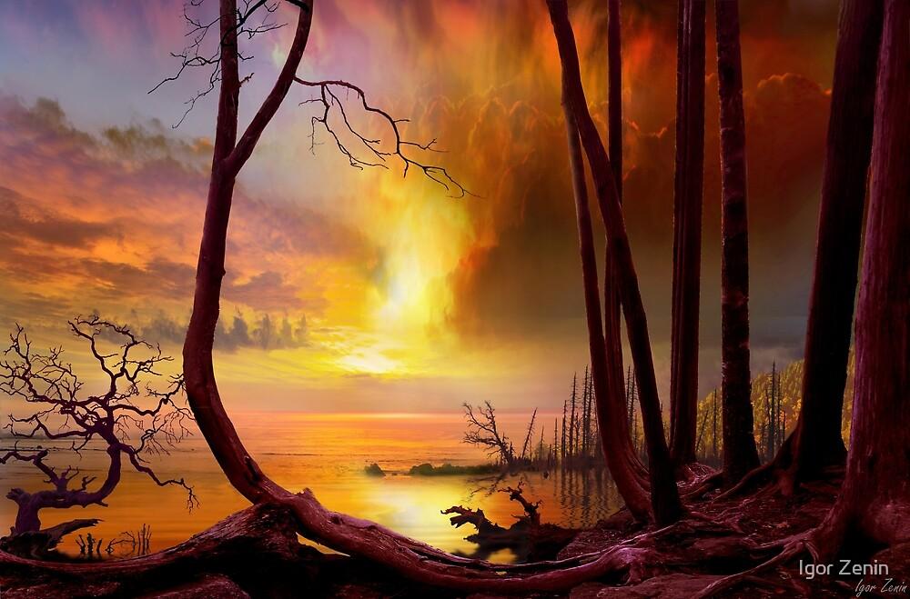 Golden Shores by Igor Zenin