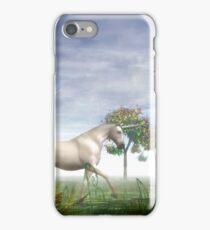 A Unicorn Fantasy iPhone Case/Skin