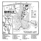 Col. Elwell Map by Mowglis