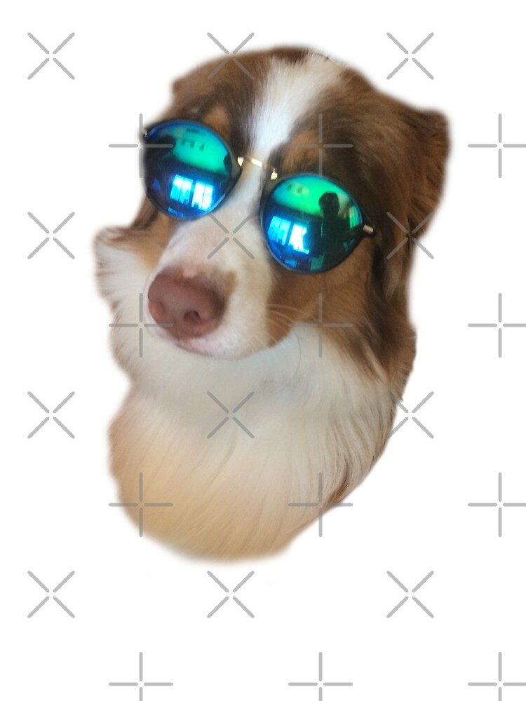 Dog's sunglasses by DaveDms