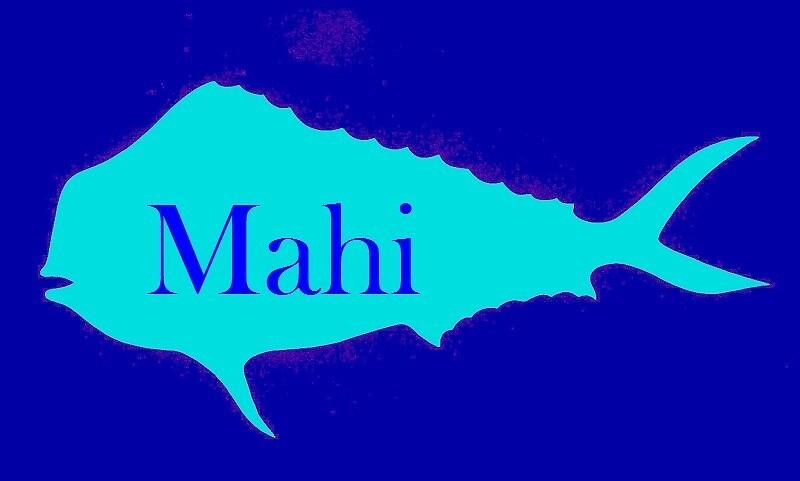 Mahi Mahi by Nautic Dreams