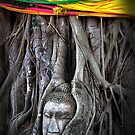 Buddha and the Tree by fatfatin