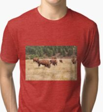 Bison Grazing Tri-blend T-Shirt