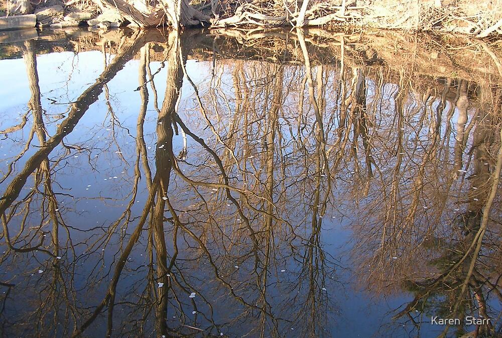Reflections by Karen  Starr