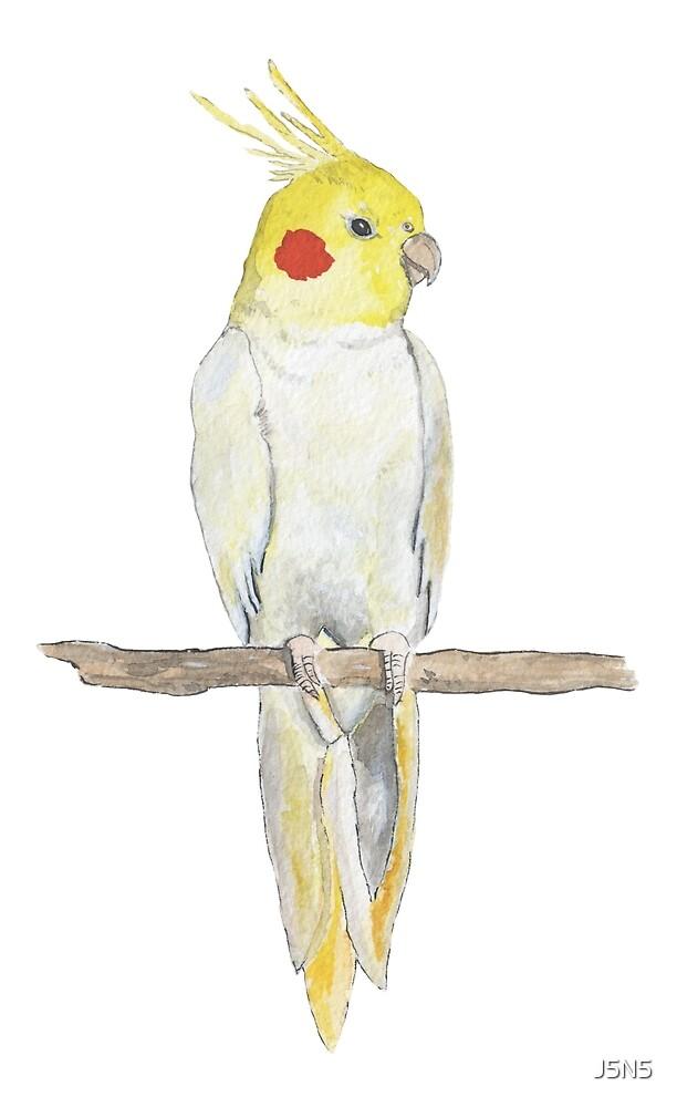 Watercolor parrot by J5N5