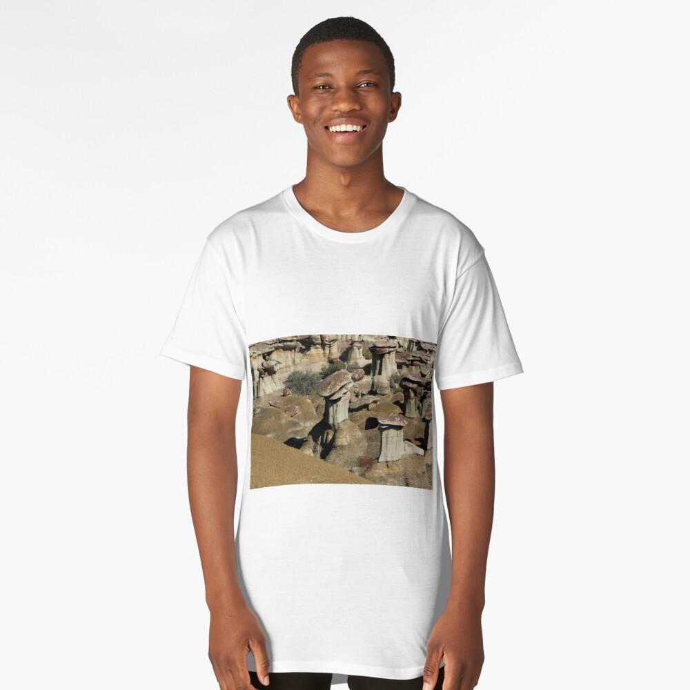 USA New Mexico Ah-Shi-Sle-Pah Long T-Shirt Front