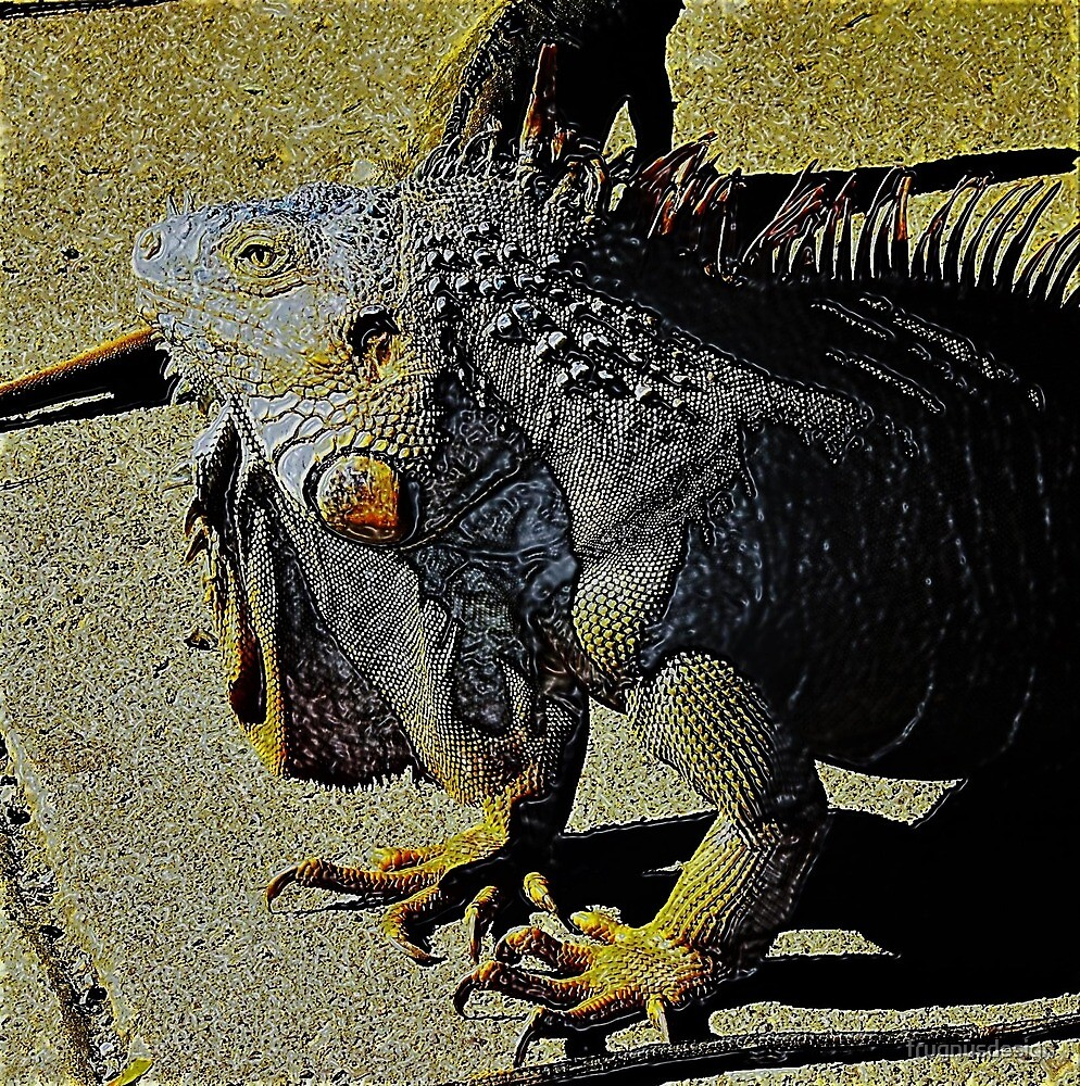 Iguana beauty by frugnusdesign