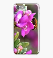 Lavender Blossoms with a Bee  iPhone Case/Skin