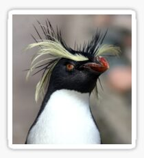 Punk Penguin Sticker
