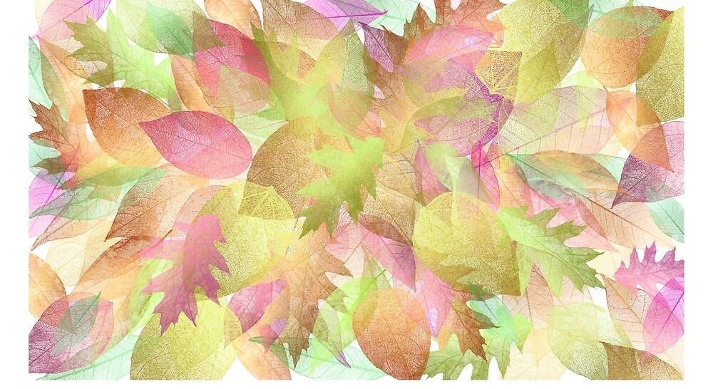 Colorful leaves with no background by Kroliza