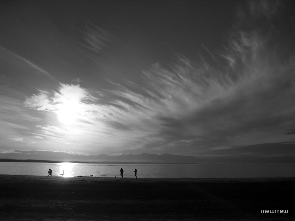 Tahuna Beach, New Zealand by mewmew