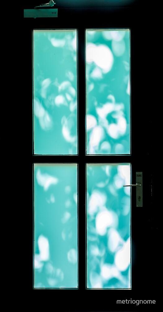 Front Door by metriognome