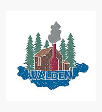 Walden - Henry David Thoreau (Coloured textured version) Photographic Print