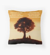 Iroh's tale Throw Pillow