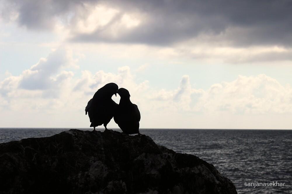 Lovebirds by sanjanasekhar