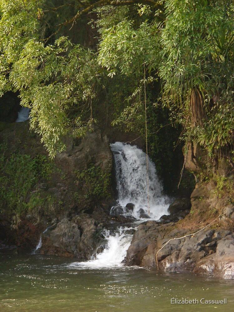 Waterfall in Hawaii by Elizabeth Casswell