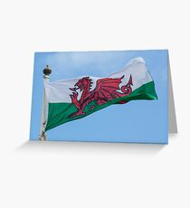Flying the Dragon Greeting Card