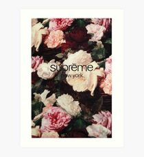 Supreme PCL Media Cases, Pillows, and More. Art Print