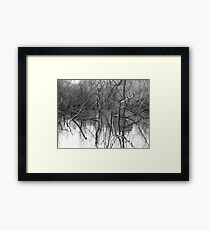 Reflections 1 Framed Print
