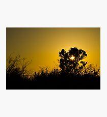 Sunset at an evening walk. Photographic Print