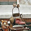 Sparrows in Venice by julie08