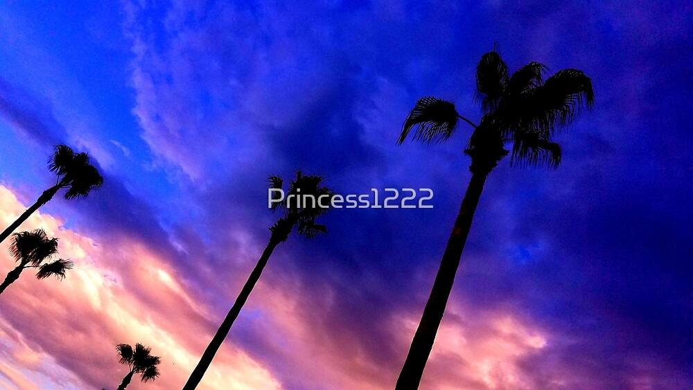 Stormy Sunset by Princess1222