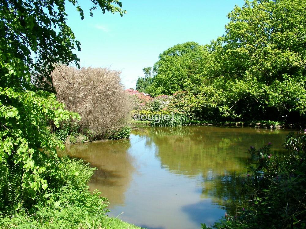 grinkle park hotel garden by dougie1