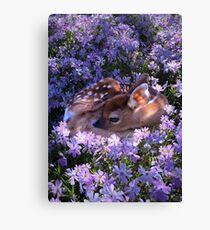 Flower Fawn Canvas Print