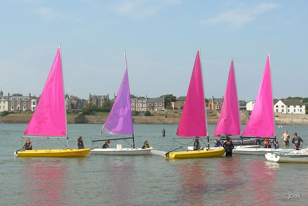 pink armada by joak