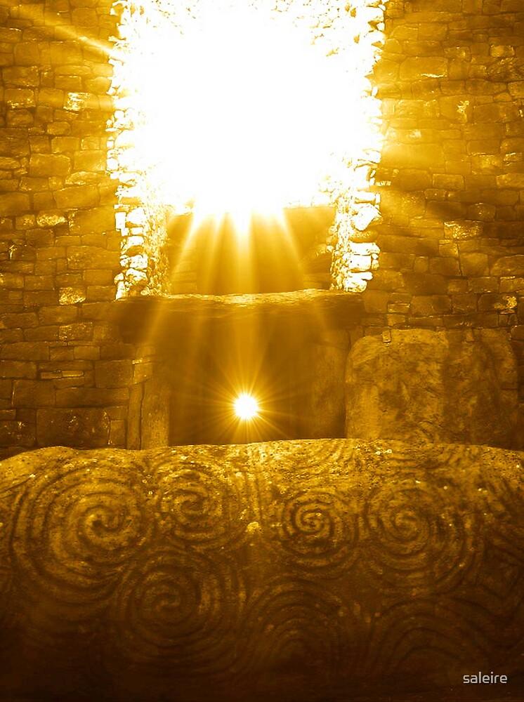Newgrange by saleire