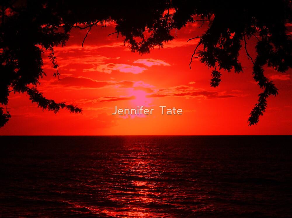 Red Sunset by Jennifer  Tate